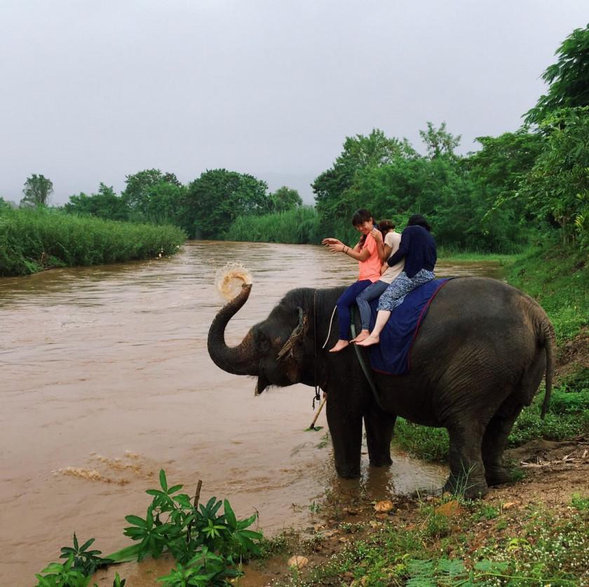 タイ(チェンマイ)のヨガフェスに(2019.3)